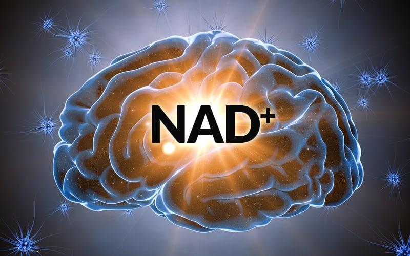 NAD IV
